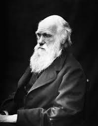 DARWIN, LA FACE CACHÉE DE L'OSTÉOPATHIE. APPROCHE ÉVOLUTIONNISTE DE LA SANTÉ À TOULOUSE
